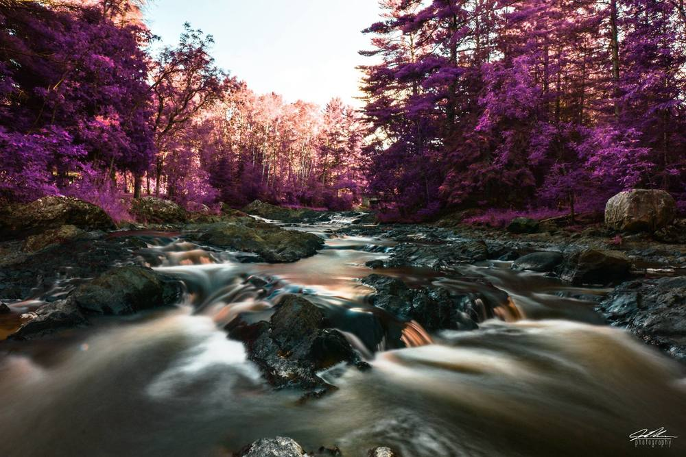 10 Gorgeous State Parks in Wisconsin