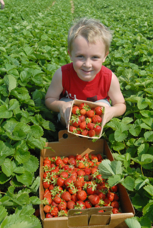 Tastes, Tours & More: 6 Ag-ventures For You!